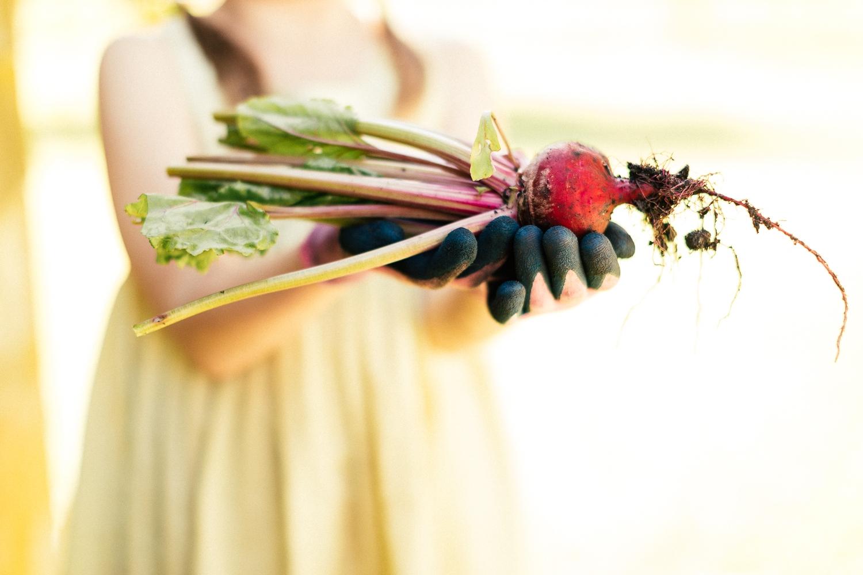 Gardening activities for kids radish